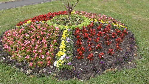 Church Green Whickham flower beds June 18 (4)