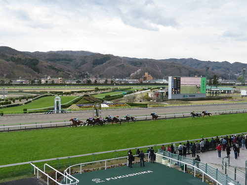 福島競馬場の芝2000mひめさゆり賞