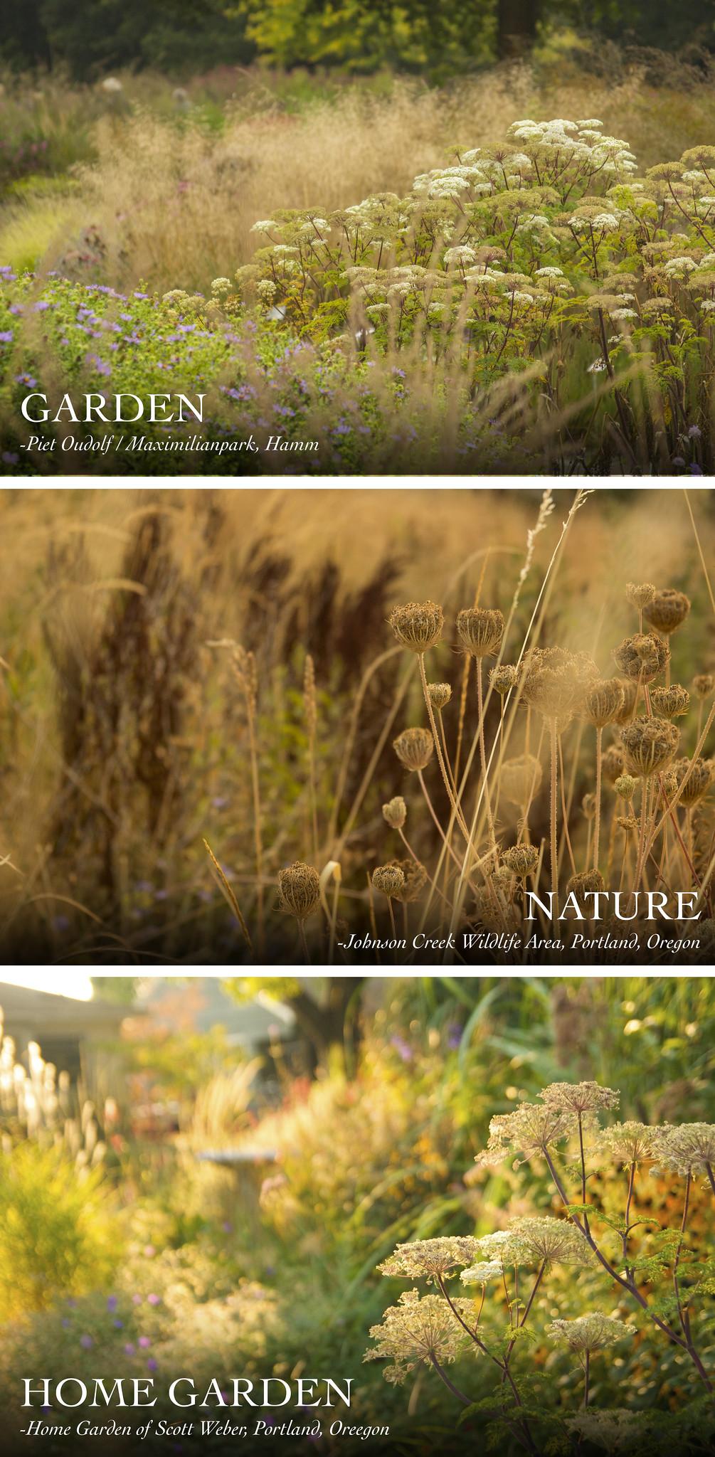 nature 4