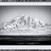 Mount Drum - Alaska