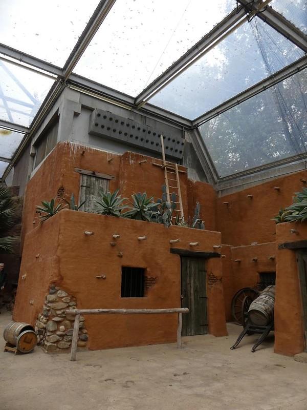 Desert, Burgers Zoo