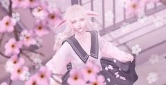 「Sakura Hunt」