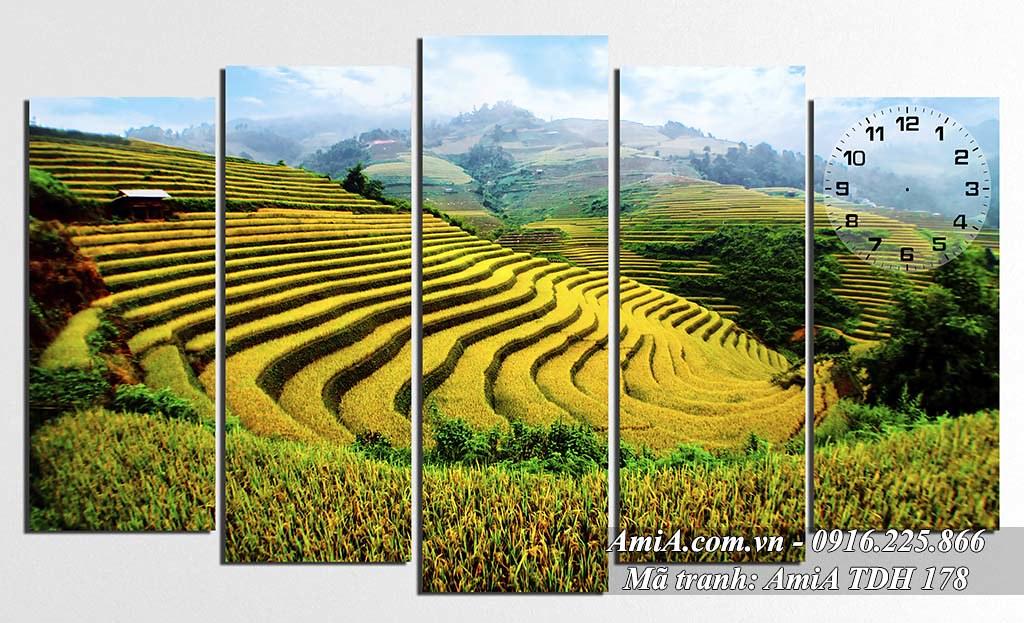 AmiA 178 - Tranh quê hương ruộng lúa chín vàng Tây Bắc
