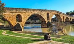 Puente la  Reina. Navarra.