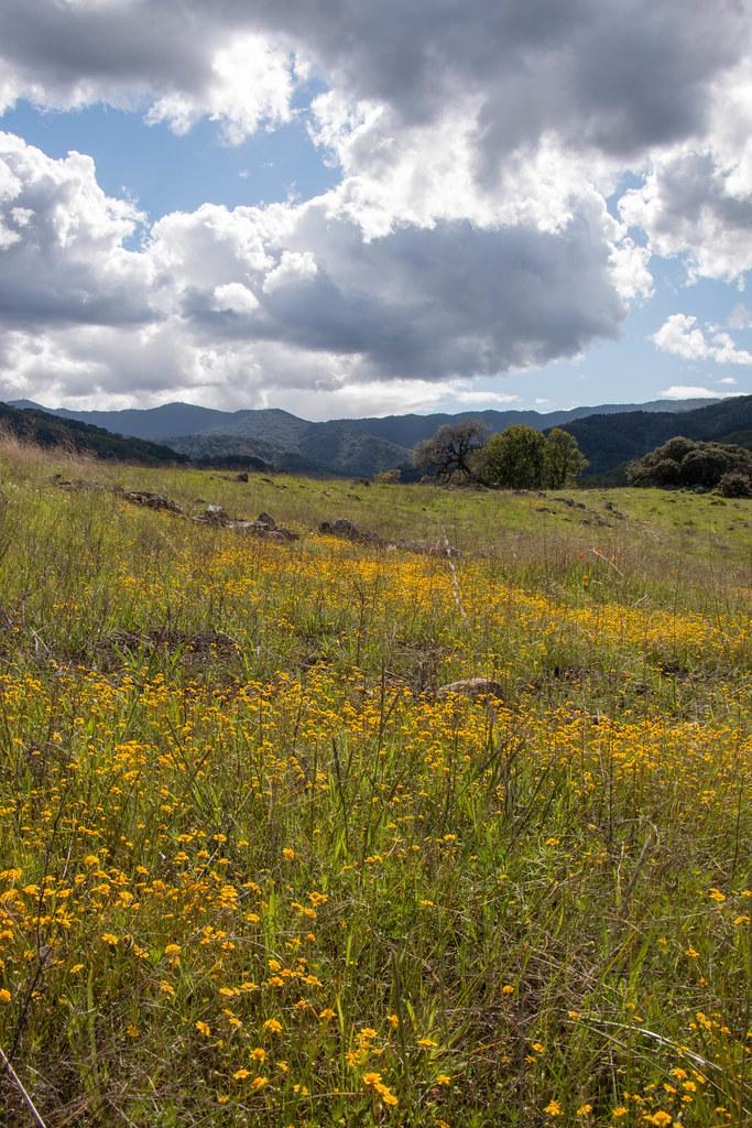 03.25. Rancho San Vicento