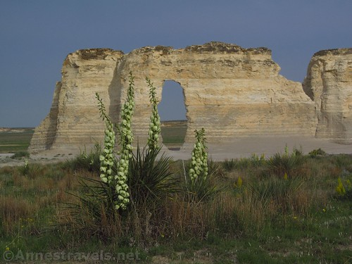 Wildflowers and the Keyhole in Monument Rocks, Kansas
