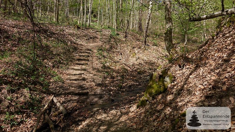 Klettersteig Rhein : Mittelrhein klettersteig u kletter und naturgenuss traumsteige