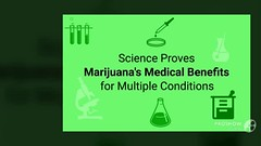 Various Medicinal Benefits to be learned from Cannabis Business Education
