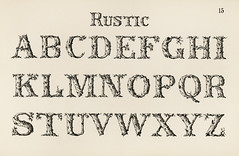 Rustic calligraphy fonts from Draughtsman's Alphabets by Hermann Esser (1845–1908). Digitally enhanced from our own 5th edition of the publication.