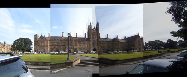 usyd honours thesis