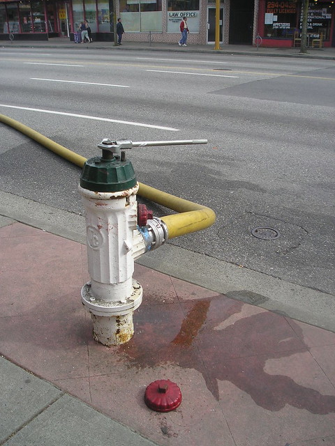 Fire Hydrant on Hasting in Burnaby