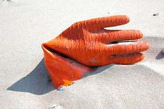 handsome glove on the beach
