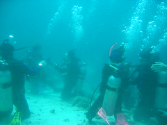 Anilao Diving Tour