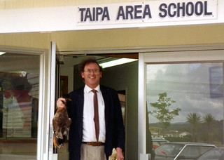 Death of a duck, Taipa, Northland, 1993 - a birdstrike tale.