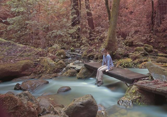 Footbridge over West Waddell Creek, Big Basin State Park