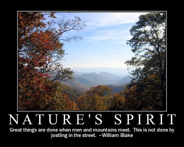 Nature S Plus Uk