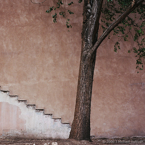 Tree & Wall, Study (old version) by JMichaelSullivan