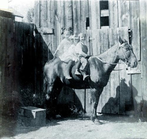 Three on a horse