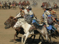 western riding(0.0), charreada(0.0), pack animal(0.0), chariot racing(0.0), troop(0.0), horse harness(1.0), buzkashi(1.0),