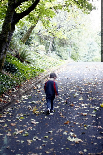 nick walking throught the autumn leaves on larch street    mg 2119