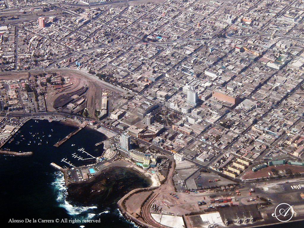En chile convocan marcha contra colombianos taringa for Vivero antofagasta