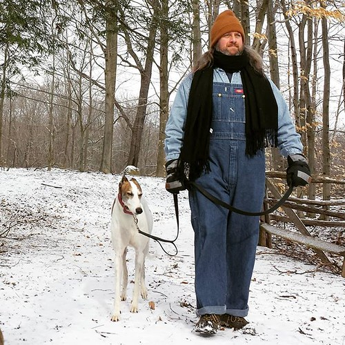 I interpret the Dee-oh-gee's expression as being sick of winter's shit. #Cane #DogsOfInstagram #greyhound #KnoxFarm #EastAurora #wny #spring #overalls #dickiesworkwear #bluedenim #dungarees #biboveralls #doubledenim