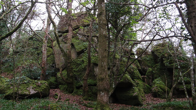 Kelly Mine Tor (upper)