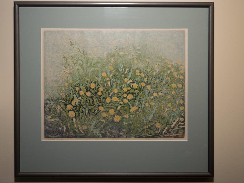 freeman dandelions
