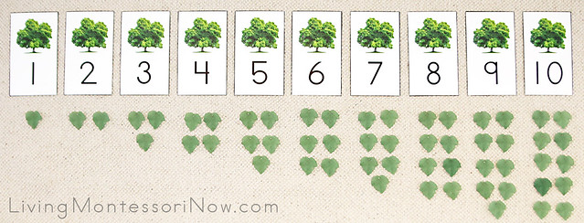 DIY Maple Tree Cards and Counters Layout