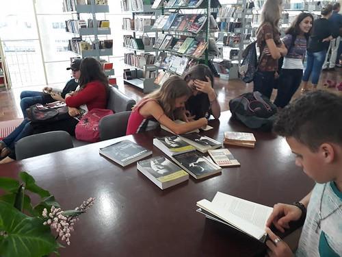 biblioteca1