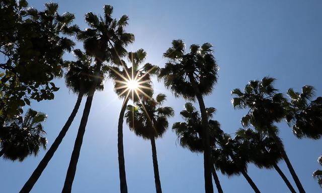 Buona estate! Enjoy Summer!