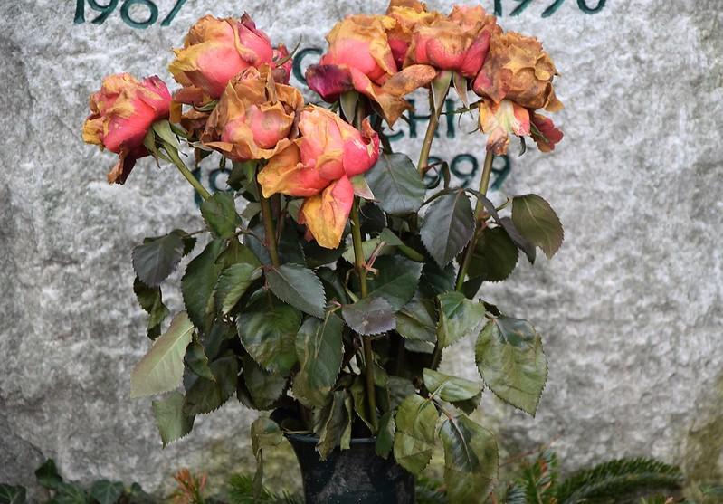 Cemetery 30.03 (19)