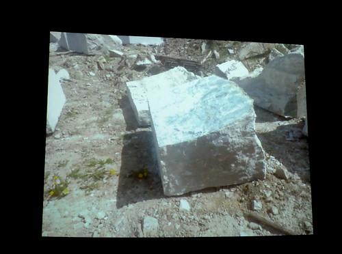 Cecilia Edefalk – Stenen i Kolmården