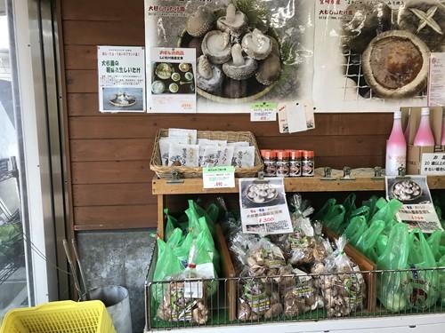 michinoekiyamaguchi010