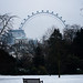 London Eye desde St. James's Park by Víctor Onieva