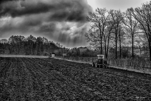 goodluck arableland plowing spring revival rain crowds earth life help work farm next good expectation landscape field trees sky