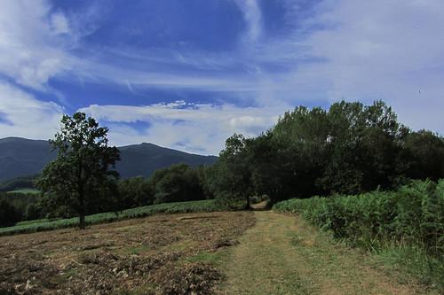 20120925 27 095 Jakobus Feld Wald Wiese Wolken Baum Weg