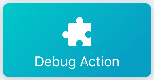 Workflow: Debug Action
