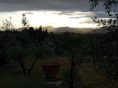 Tuscany Daybreak