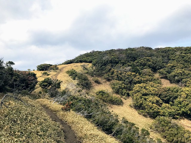 入道ヶ岳 山頂部 北の頭