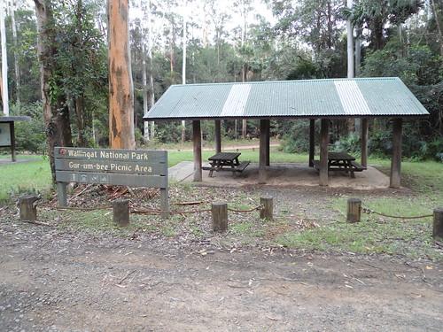 Wallingat National Park