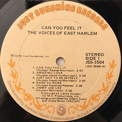 THE VOICES OF EAST HARLEM:CAN YOU FEEL IT(LABEL SIDE-A)