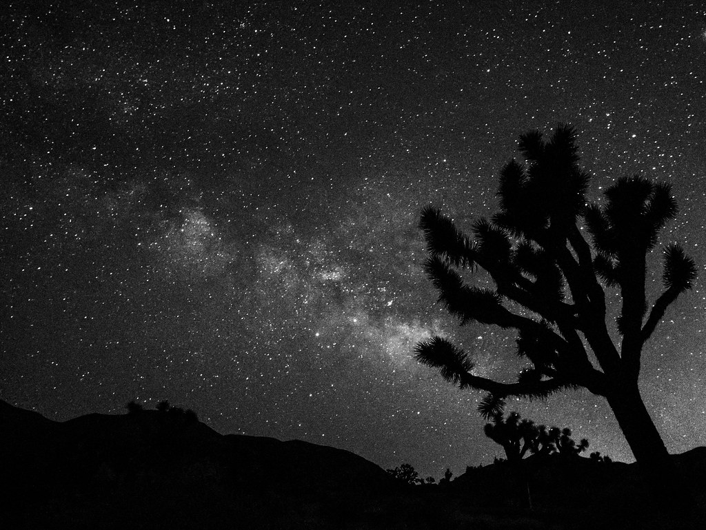 Joshua Tree National Park at Night - PentaxForums com