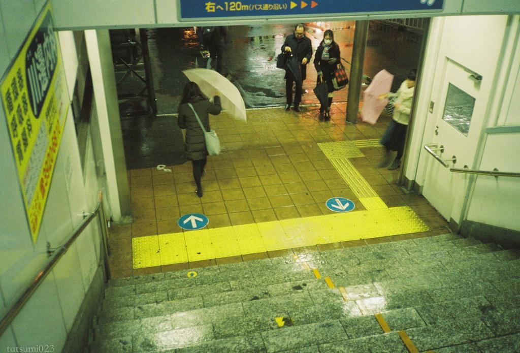 2018-04-07 雨の日散歩 004
