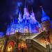 Cinderella Castle   Magic Kingdom by Pandry 2015