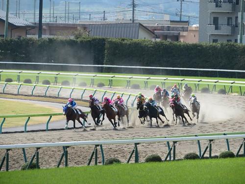 福島競馬場のダート4コーナー