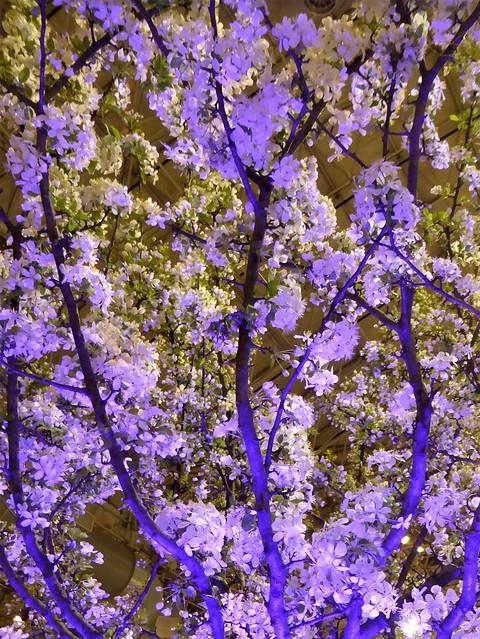 Chicago, Navy Pier, Chicago Flower & Garden Show, Illuminated Flowering Tree
