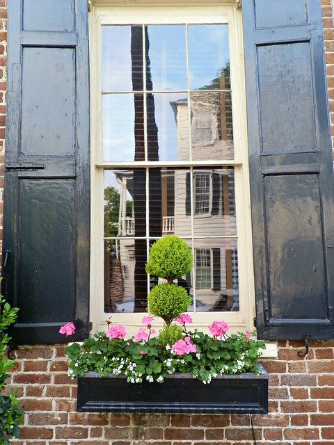 window box 4