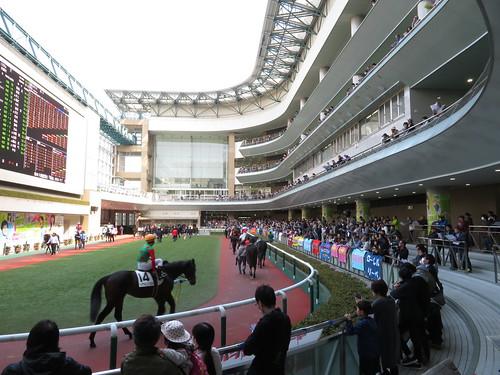 福島競馬場のパドック2階からの眺め