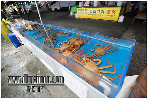 機張市場 Snow Crab